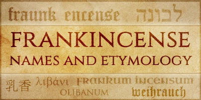etymology2